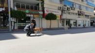Sokağa Çıkma Yasağı Sırasında Şehir Merkezleri Hayvanlara Kaldı
