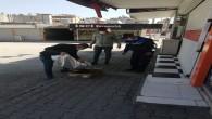 Samandağ Belediyesi sokak hayvanlarının imdadına yetişti