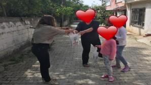 CHP Defne İlçe Kadın Kolları Çalışmalarına Aralıksız Devam Ediyor