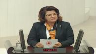 CHP'li Suzan  Şahin, Narenciyeyi sıcak vurması konusunu TBMM gündemine taşıdı