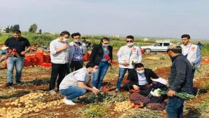 CHP Hatay Gençlik Kolları Tarla İşçilerini Unutmadı