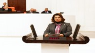 CHP'li Suzan Şahin Sordu: Payas'a neden Hastane yok?