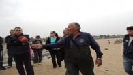 Erzin Burnaz plajında yapılan termik santralın sıcak suyu balıkları haşlıyor