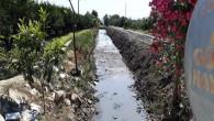 Hatay Büyükşehir Belediyesi Dere temizliğine önem veriyor