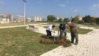 Antakya Belediyesi'nin ağaçlandırma  çalışmaları tam gaz
