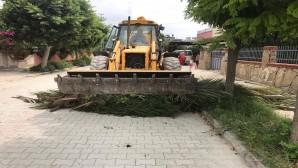Samandağ Belediyesi'nin Temizlik seferberliği devam ediyor