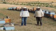 Malatyalı Arıcalar 'Hakiki Bal ve Kaliteli Bal Üretiyoruz'