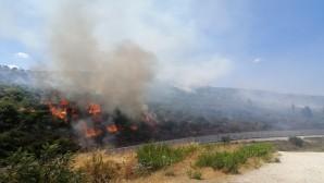 Hatay Büyükşehir Belediyesi Orman yangınlarına hızla müdahale ediyor