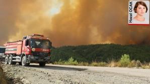 Çarpıcı Hatay orman yangını raporu: Arıza bilindiği halde giderilmemiş