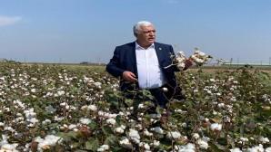 CHP Hatay Milletvekili İsmet Tokdemir:  Pamuk üreticisi bu yıl da mağdur, hasadını yapıyor ancak kazancı borçlarını karşılamıyor