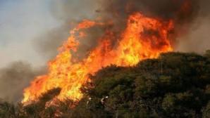 Hatay Büyükşehir Belediyesi itfaiyesinden yangınlara anında müdahale