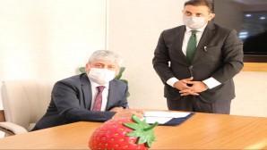 Vali Rahmi Doğan, DOĞAKA ile Yayladağı Çilek İşleme Tesisi Protokolü İmzaladı