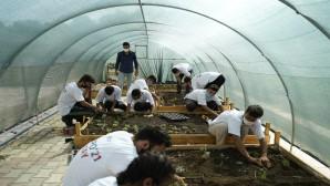EXPO 2021'de Öğrencilerin ürettiği çiçekler yer alacak