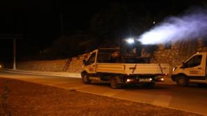 Hatay Büyükşehir Belediyesi Haşere ile mücadeleyi sürdürüyor