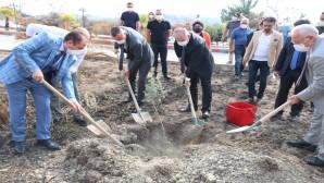 Rektör Prof. Dr. Tolga Depci: Bir ağaca karşılık, Bin ağaç dikeceğiz