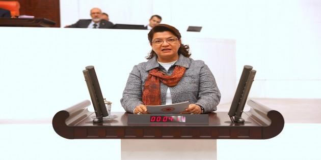 CHP Hatay Milletvekili Suzan Şahin: Yangınları çıkaranları açıklamak Devletin görevidir