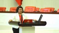 CHP milletvekili Suzan Şahin: Afrin'den gelen ithal mal yerli mal diye piyasaya sunuluyor