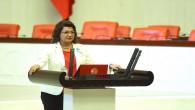 CHP Hatay Milletvekili Suzan Şahin: Hükümet Yangınlar terör eylemidir diyemiyor!