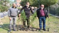 Ağaç Ekmek Bir Sevda İşi, Emek İster!                         Nazik Kuyumculuk Dursunluspor'dan Dursunlu'ya Ağaçlandırma