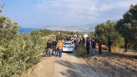 Arsuz Akçalı'daki Zeytin katliamına vatandaş tepkisi!