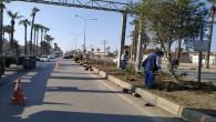 Hatay Büyükşehir Belediyesi'nden İskenderun'a 14 bin 600 adet bitki