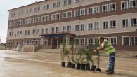 Hatay Büyükşehir Belediyesi'nden Milli Eğitime Çağrı: Okul  Bahçelerini ağaçlandıralım!