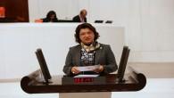 CHP Milletvekili Suzan Şahin, Etüd merkezindeki taciz olayını Meclise taşıdı