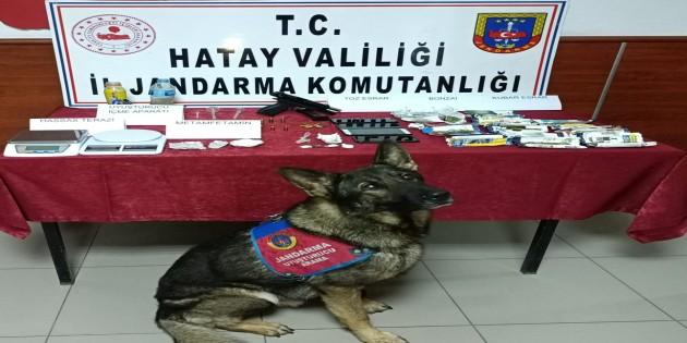 Jandarma'dan uyuşturucu tacirlerine operasyon: 6 kişi tutuklandı