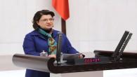 CHP'li Suzan Şahin, Emekli maaşlarının asgari ücretin altında olmamasını ve vergiden muaf tutulmasını istedi