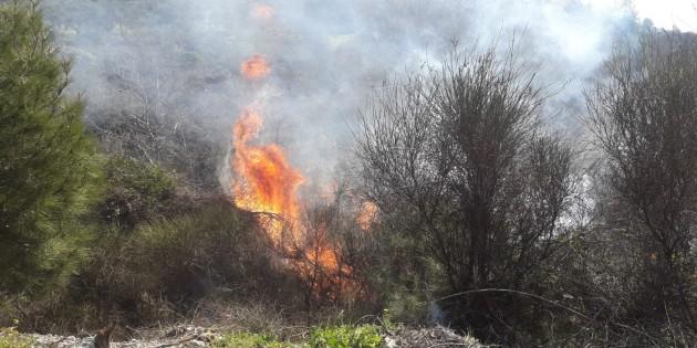 Gülderen Mahallesindeki yangın kontrol altına alındı