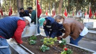 Hatay Büyükşehir Belediyesi İskenderun'daki Şehit Mezarlarını çiçek bahçesine dönüştürdü!