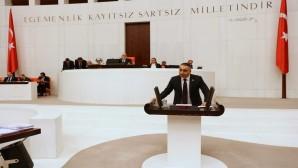 MHP'li Kaşıkçı: Yayladağı çilek üreticisinin mağduriyeti giderilsin