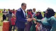 CHP'li Güzelmansur: Tüm kadınlarımızın 8 Mart Dünya Emekçi Kadınlar Günü'nü kutluyorum!