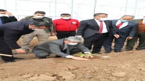 Hatay Valisi Rahmi Doğan, Reyhanlı'daki  Türk Kızılay Sera projesinde incelemelerde bulundu