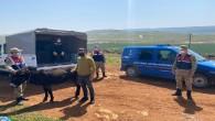 Jandarma, Eşeğini döven Çoban'a 1.033 lira ceza yazdı