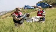 Jandarma Samandağ'da yaralı bir kartalı arazide buldu