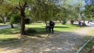 Antakya Belediyesi Parklarda cim biçme ve bakım çalışmalarını sürdürüyor