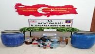 Janadarma Arsuz'da 174 kök kenevir bitkisi ile 115 litre rakı yakaladı