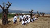Hatay Büyükşehir Belediyesi Minik Eller fidanları toprakla buluşturdu