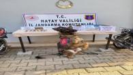 Uyuşturucu Madde Kaçakçılarına Jandarma operasyonu