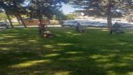 Antakya Belediyesi Parklarda çim biçme ve bakım çalışmalarını sürdürüyor