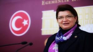 CHP Hatay Milletvekili Suzan Şahin: Hatay GAP'a katılsın!