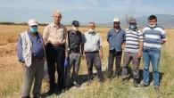 Hatay'lı Çiftçiler: Buğday taban fiyatının dönüm başına 2200 yerine 2400 lira üzeri olması daha uygun olacak!