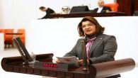 CHP Hatay Milletvekili Suzan Şahin, Atatürk'e hakaret olayını Meclis gündemine taşıdı