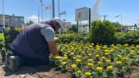 Hatay Büyükşehir Belediyesi Peyzaj çalışmalarını sürdürüyor