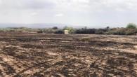 Hatay Büyükşehir Belediyesi İtfaiye Daire Başkanlığından Anız yangınları için uyarı