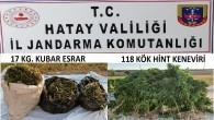 Jandarma Samandağ'ında 17 kilo esrar ile 312 kök hint keneviri yakaladı