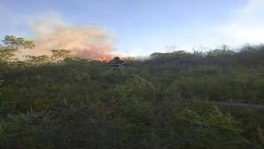 Hatay Büyükşehir Belediyesi İtfaiyesi Karbeyaz Mahallesinde meydana gelen yangına hızlı müdahale etti!