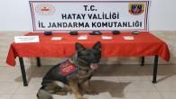 Reyhanlı'da Jandarma 2 kişide 12.000 adet captagon habı yakaladı