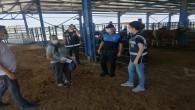 Polis'ten Hayvan pazarındaki tüccarlara sahte para uyarısı